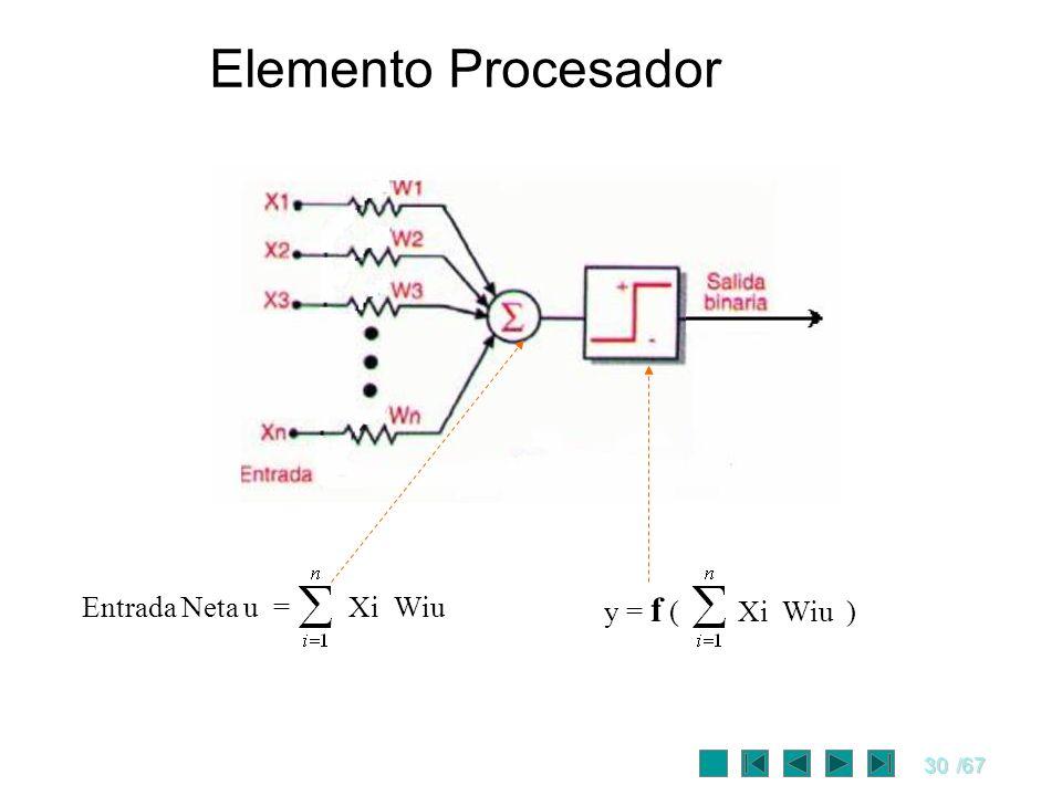 30/67 Entrada Neta u = Xi Wiu y = f ( Xi Wiu ) Elemento Procesador