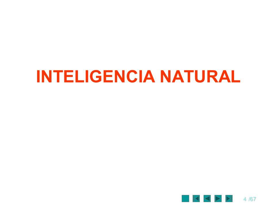4/67 INTELIGENCIA NATURAL