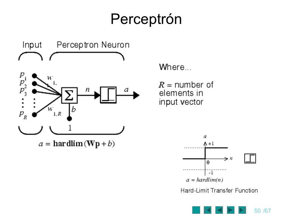 50/67 Perceptrón