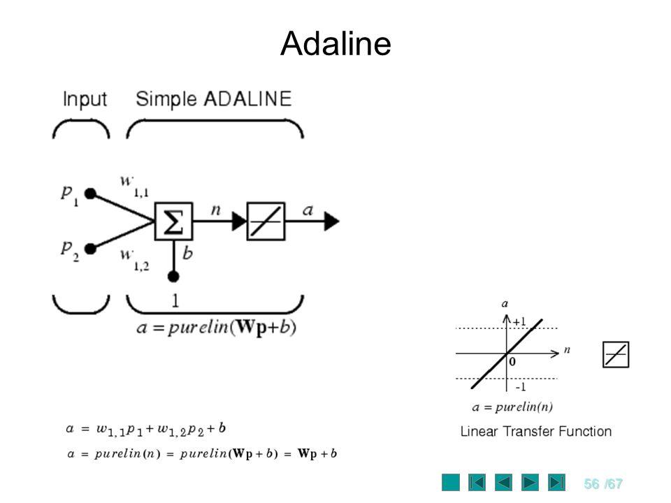 56/67 Adaline