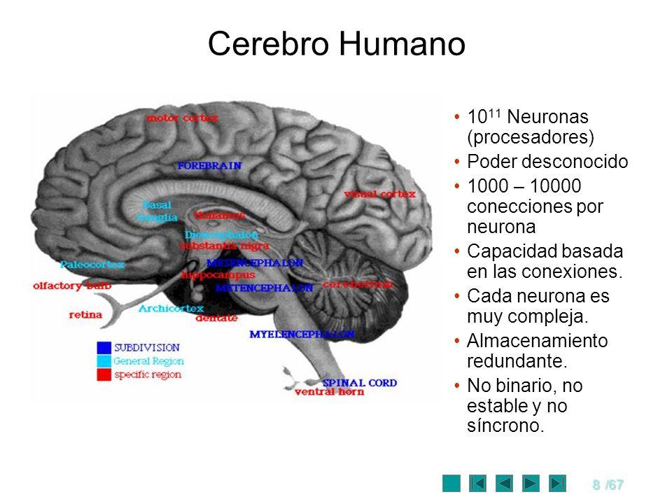 8/67 Cerebro Humano 10 11 Neuronas (procesadores) Poder desconocido 1000 – 10000 conecciones por neurona Capacidad basada en las conexiones. Cada neur