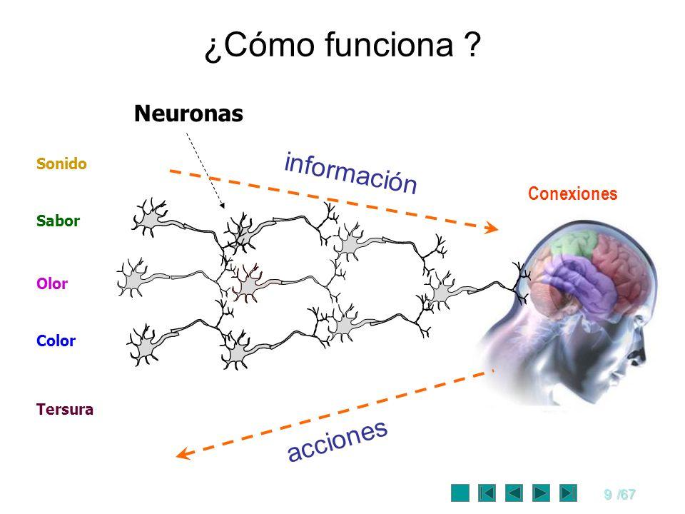 9/67 Neuronas ¿Cómo funciona ? Color Sabor Olor Sonido Tersura información acciones Conexiones