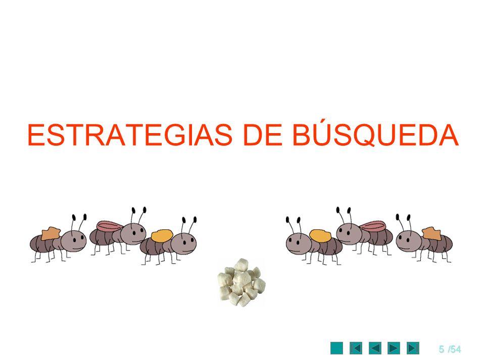 5/54 ESTRATEGIAS DE BÚSQUEDA