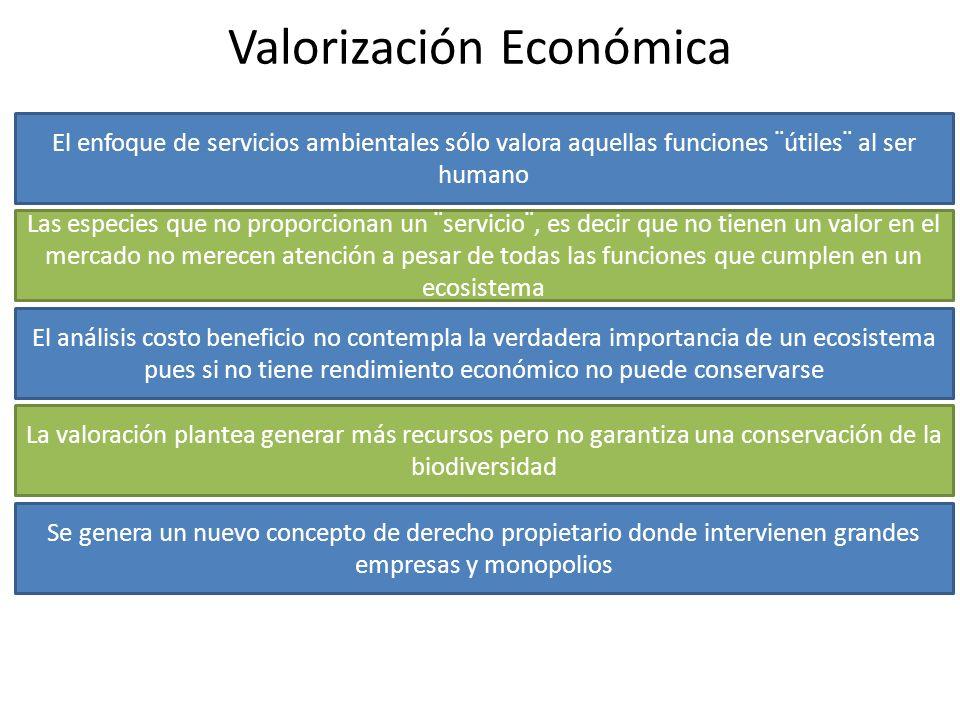 Valorización Económica El enfoque de servicios ambientales sólo valora aquellas funciones ¨útiles¨ al ser humano Las especies que no proporcionan un ¨