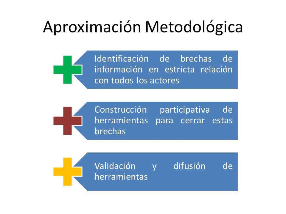 Identificación de brechas de información en estricta relación con todos los actores Construcción participativa de herramientas para cerrar estas brech