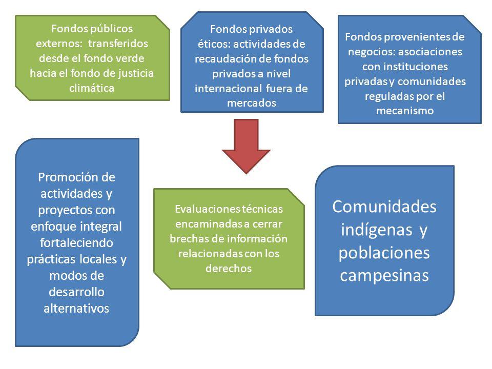 Fondos públicos externos: transferidos desde el fondo verde hacia el fondo de justicia climática Fondos provenientes de negocios: asociaciones con ins