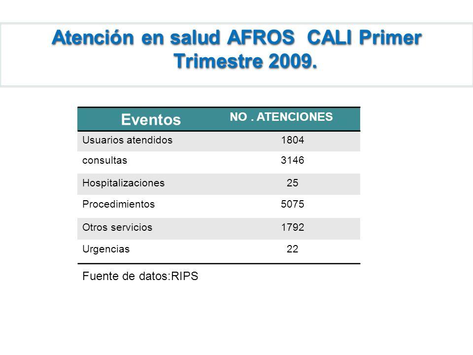 Atención en salud AFROS CALI Primer Trimestre 2009. Eventos NO. ATENCIONES Usuarios atendidos1804 consultas3146 Hospitalizaciones25 Procedimientos5075