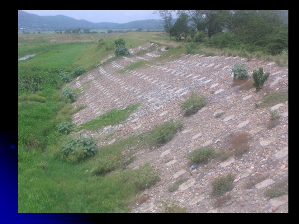SOLUCIONES 1.Vivienda segura. 2. Evitar la deforestación.