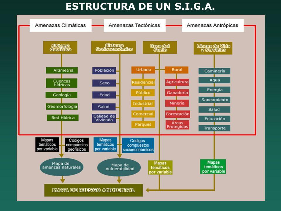 ESTRUCTURA DE UN S.I.G.A.