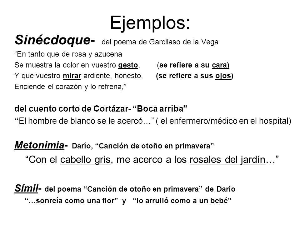 Ejemplos: Sinécdoque- del poema de Garcilaso de la Vega En tanto que de rosa y azucena Se muestra la color en vuestro gesto, (se refiere a su cara) Y