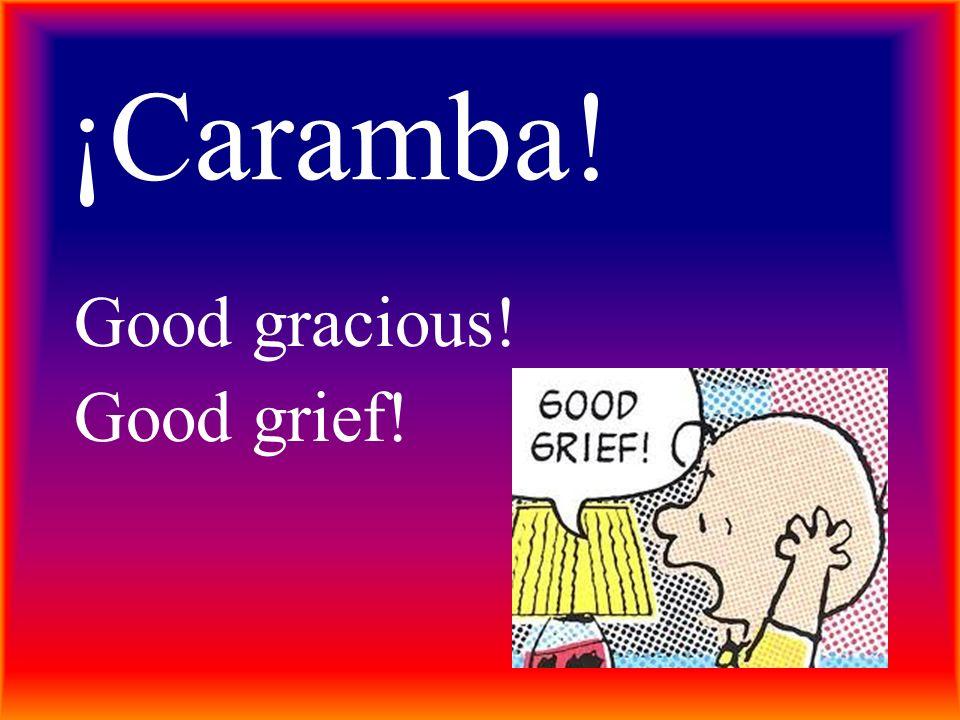 ¡Caramba! Good gracious! Good grief!