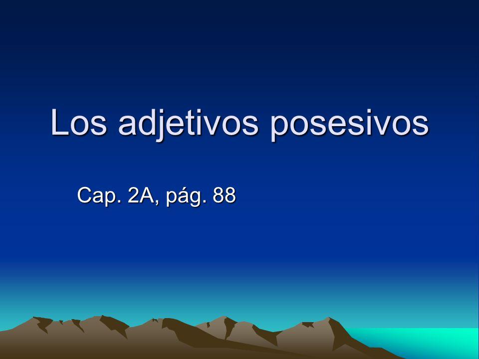 Los adjetivos posesivos Cap. 2A, pág. 88