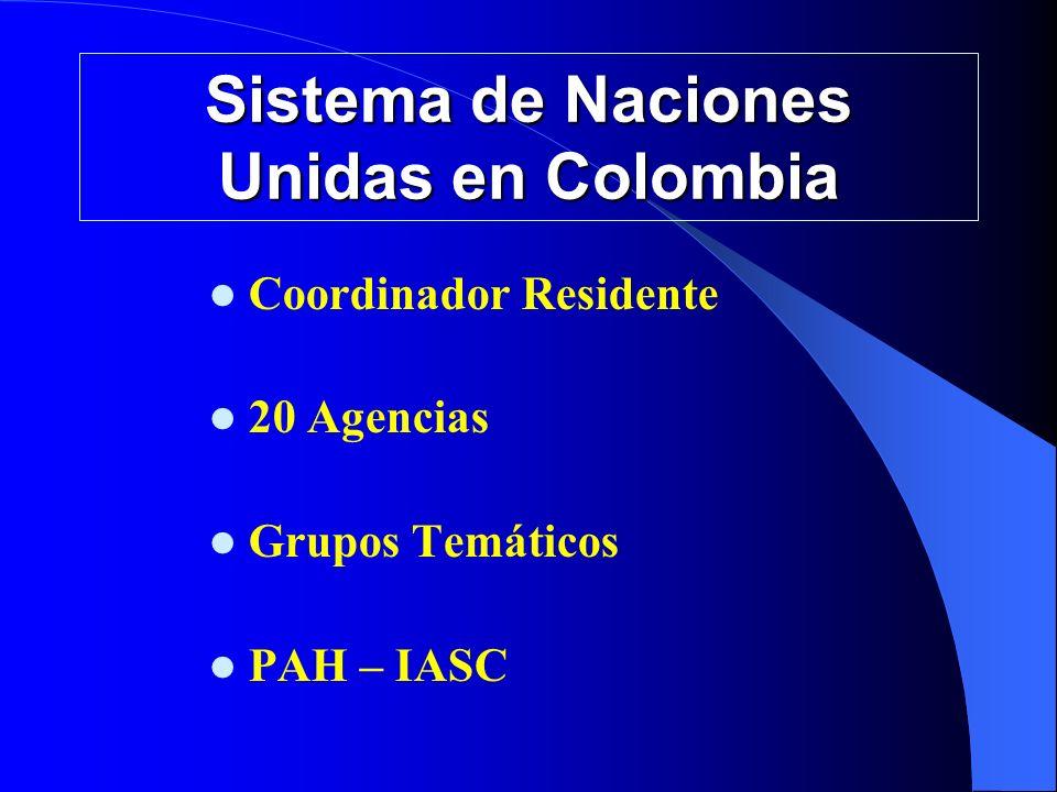 MESAS DE COORDINACIÓN DE SALUD: En Febrero 07 se acordó fusionar la Mesa de Salud con el IASC-Salud.
