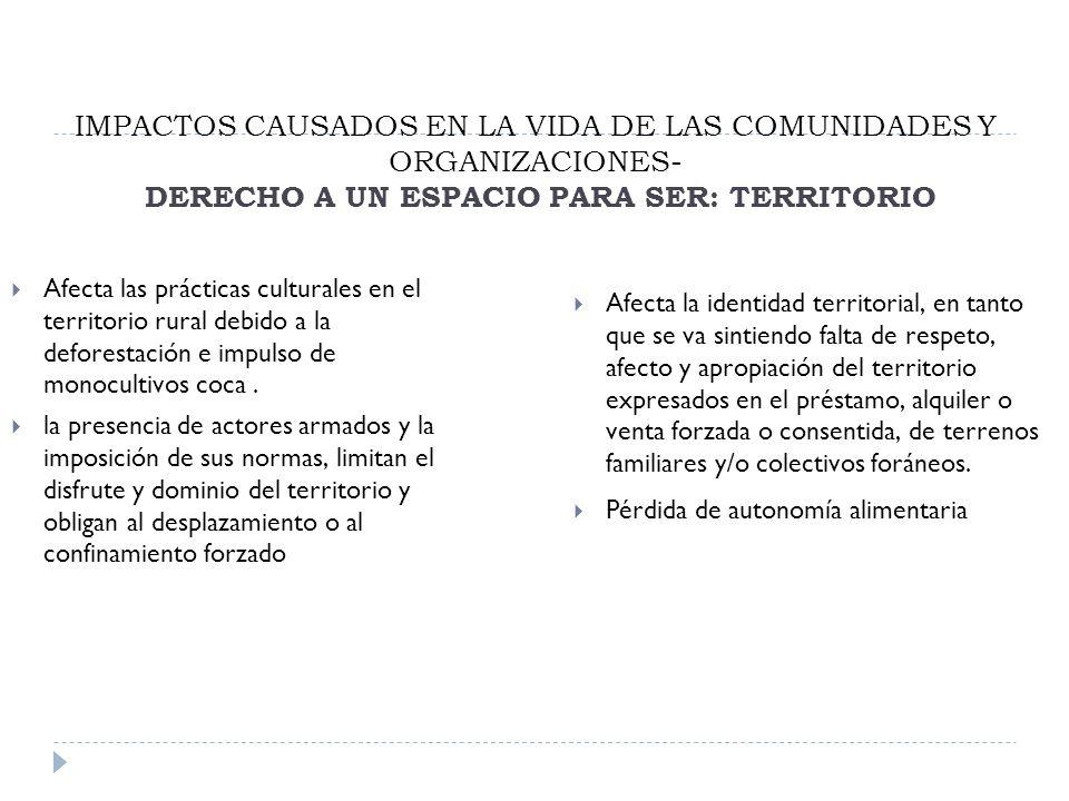 IMPACTOS CAUSADOS EN LA VIDA DE LAS COMUNIDADES Y ORGANIZACIONES- DERECHO A UN ESPACIO PARA SER: TERRITORIO Afecta las prácticas culturales en el territorio rural debido a la deforestación e impulso de monocultivos coca.