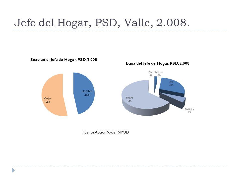 Estructura y pirámide poblacional de las personas en situación de desplazamiento.