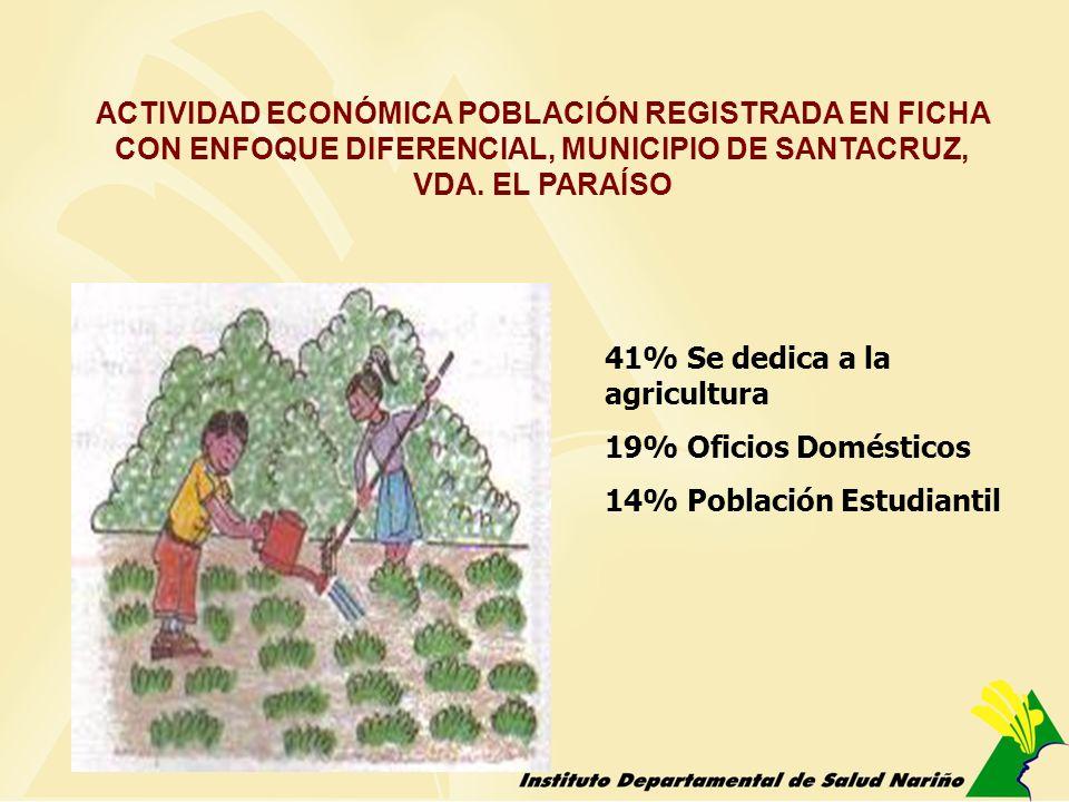 ACTIVIDAD ECONÓMICA POBLACIÓN REGISTRADA EN FICHA CON ENFOQUE DIFERENCIAL, MUNICIPIO DE SANTACRUZ, VDA. EL PARAÍSO 41% Se dedica a la agricultura 19%
