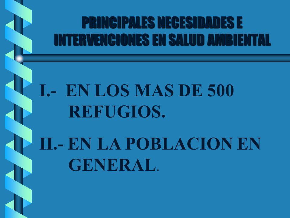 PRINCIPALES NECESIDADES E INTERVENCIONES EN SALUD AMBIENTAL I.- EN LOS MAS DE 500 REFUGIOS. II.- EN LA POBLACION EN GENERAL.