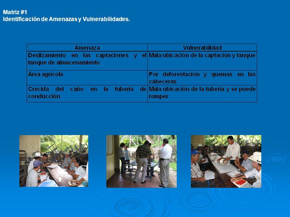 Matriz #1 Identificación de Amenazas y Vulnerabilidades.
