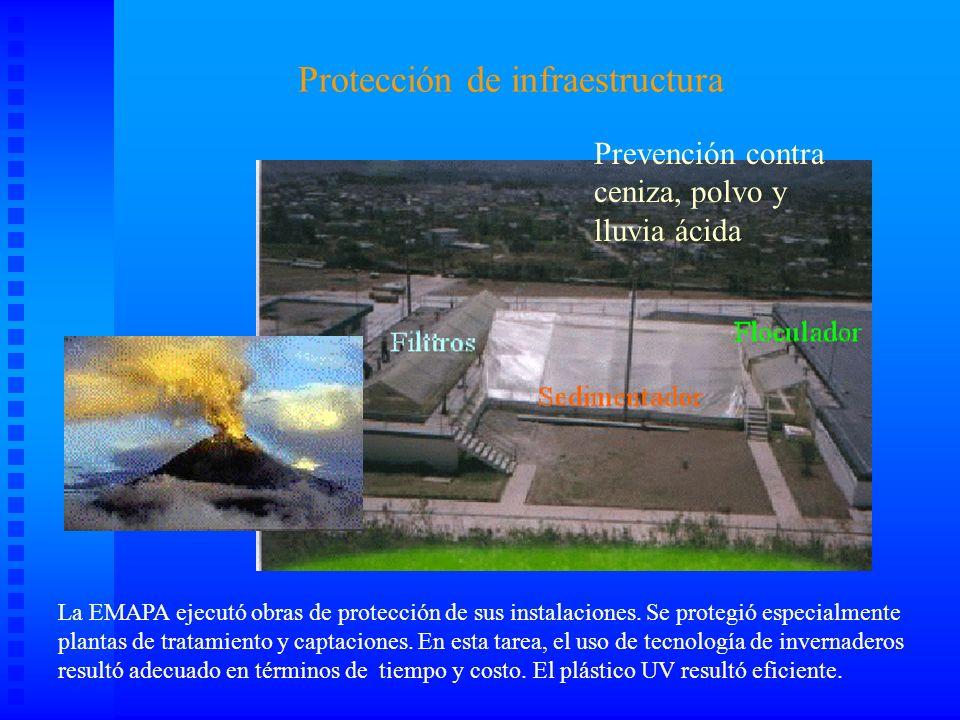 La atención a los desplazados TEMPORALES Tirso de Molina P.