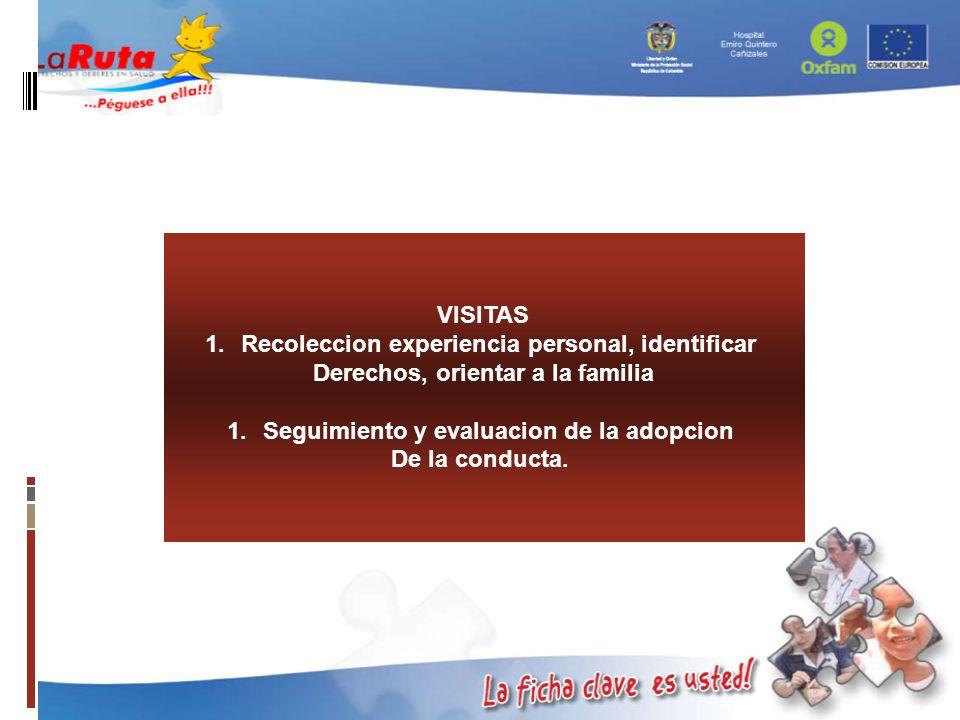 VISITAS 1.Recoleccion experiencia personal, identificar Derechos, orientar a la familia 1.Seguimiento y evaluacion de la adopcion De la conducta.