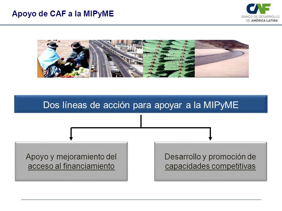 Dos líneas de acción para apoyar a la MIPyME Apoyo de CAF a la MIPyME Apoyo y mejoramiento del acceso al financiamiento Desarrollo y promoción de capa