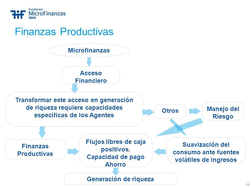 13 Microfinanzas Transformar este acceso en generación de riqueza requiere capacidades específicas de los Agentes Otros Acceso Financiero Finanzas Pro