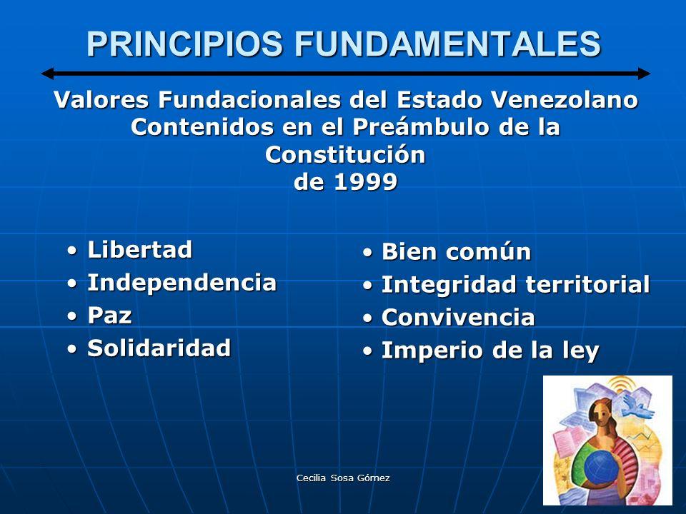 Cecilia Sosa Gómez PRINCIPIOS FUNDAMENTALES LibertadLibertad IndependenciaIndependencia PazPaz SolidaridadSolidaridad Bien común Integridad territoria