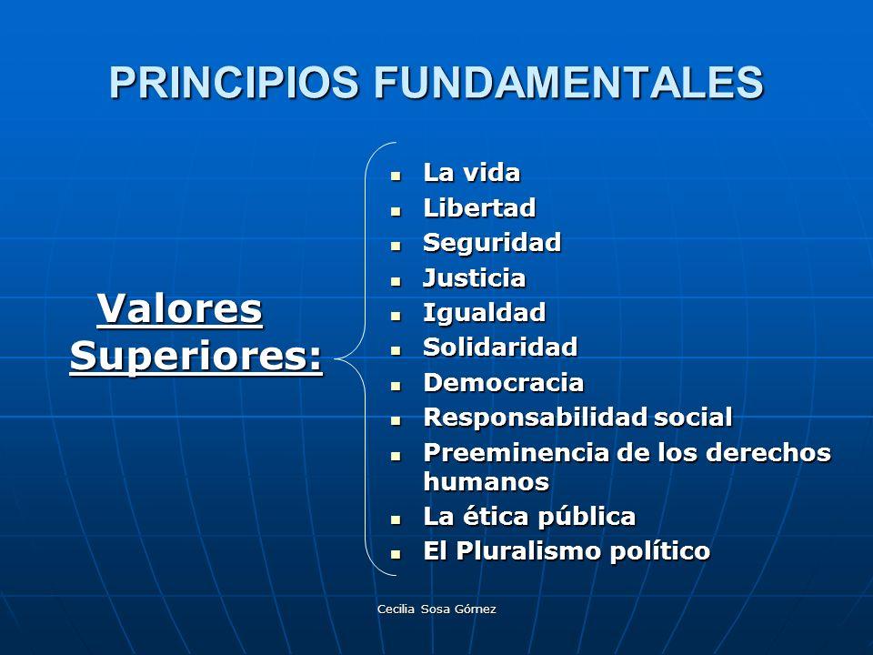 Cecilia Sosa Gómez PRINCIPIOS FUNDAMENTALES La vida La vida Libertad Libertad Seguridad Seguridad Justicia Justicia Igualdad Igualdad Solidaridad Soli
