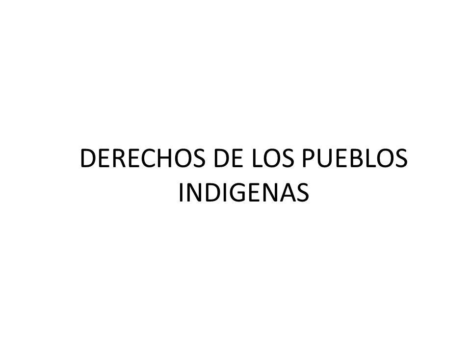 Artículo 30, parágrafo II, numeral 6: Las naciones y pueblos indígena originario campesinos tienen derecho: A la titulación colectiva de tierra y territorio.
