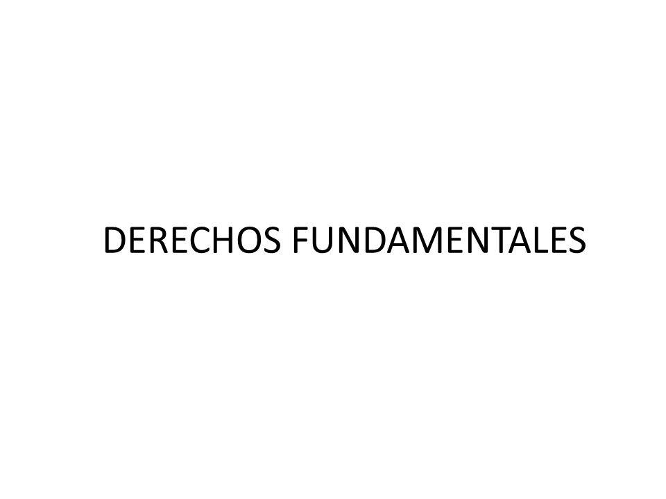 Las bases para la formulación de los DDPPII, se encuentran en: o El Convenio 169 de la Organización Internacional del Trabajo (OIT), reconocida por el