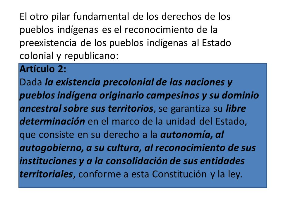 El primer pilar en el que sustentan los derechos de la NCPE es la declaratoria del Estado boliviano como Plurinacional: Artículo 1: Bolivia se constit