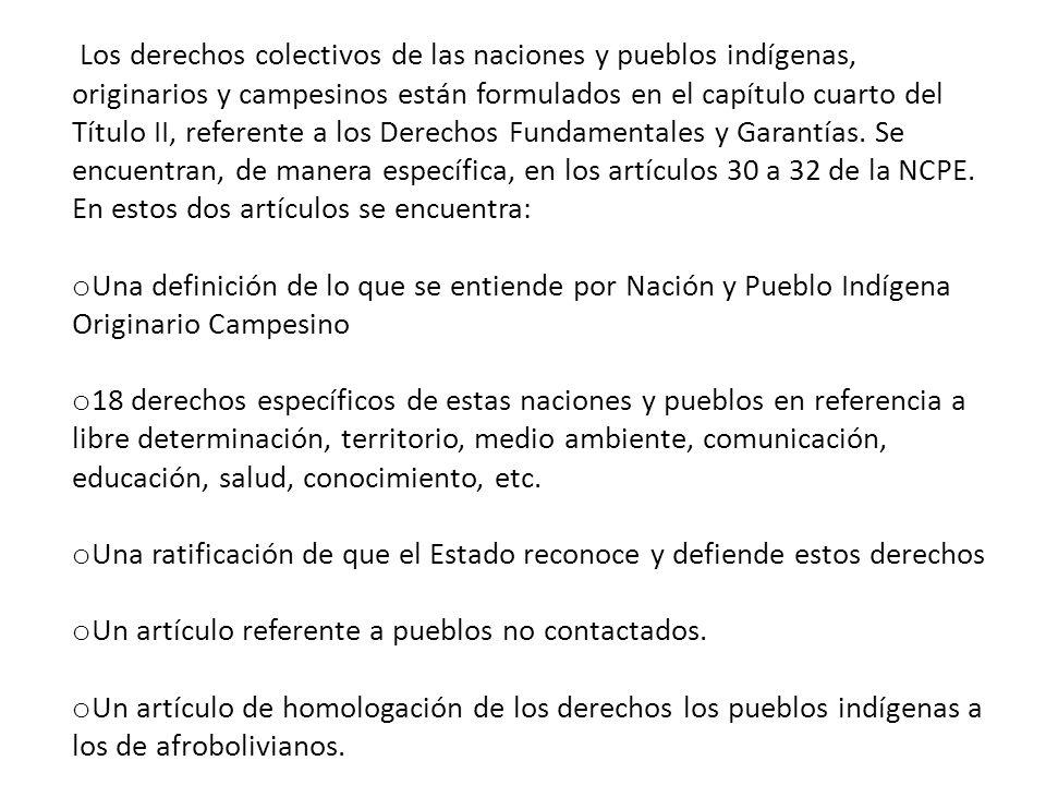 El artículo 2 de la Constitución está estrechamente relacionado con los artículos 3 y 4 de la Declaración sobre los Derechos de los Pueblos Indígenas.