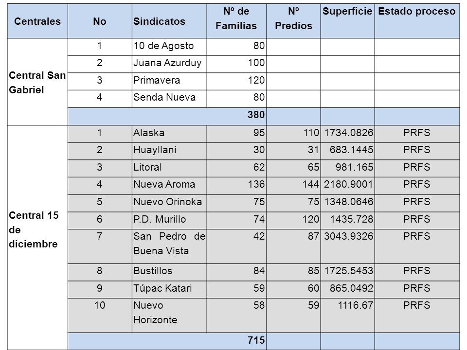 CentralesNoSindicatos Nº de Familias Nº Predios SuperficieEstado proceso Central San Gabriel 110 de Agosto80 2Juana Azurduy100 3Primavera120 4Senda Nu