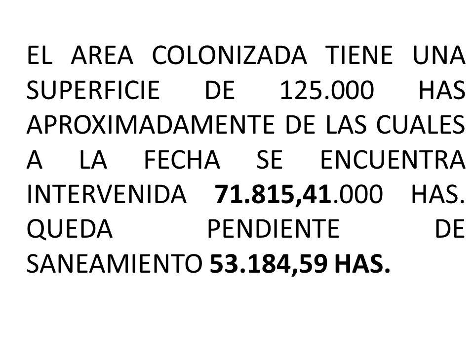 EL AREA COLONIZADA TIENE UNA SUPERFICIE DE 125.000 HAS APROXIMADAMENTE DE LAS CUALES A LA FECHA SE ENCUENTRA INTERVENIDA 71.815,41.000 HAS. QUEDA PEND