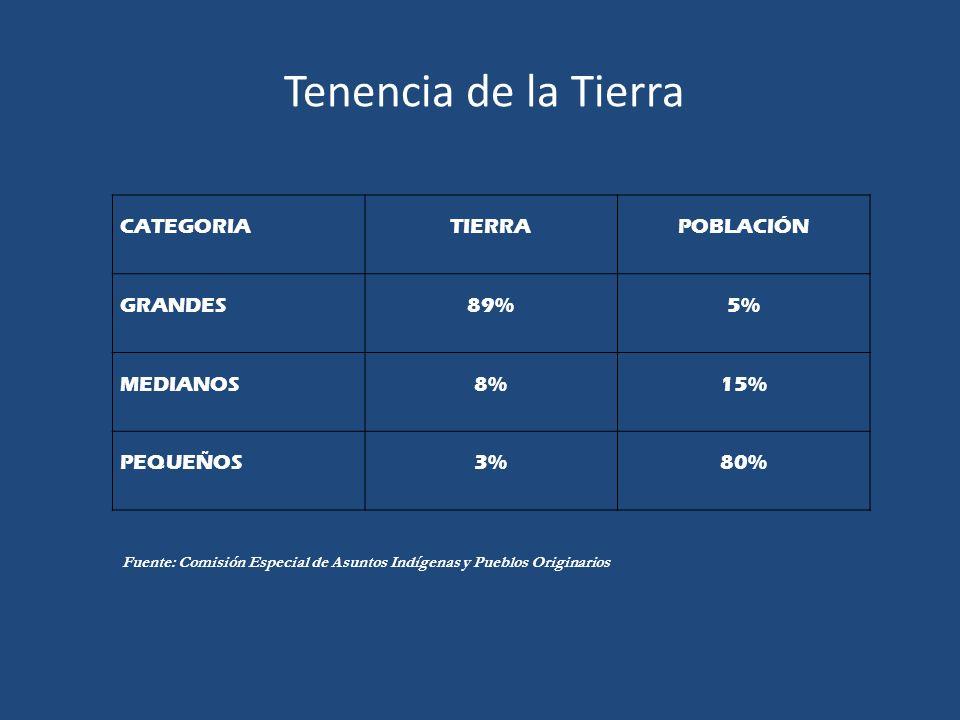 Tenencia de la Tierra CATEGORIATIERRAPOBLACIÓN GRANDES89%5% MEDIANOS8%15% PEQUEÑOS3%80% Fuente: Comisión Especial de Asuntos Indígenas y Pueblos Origi