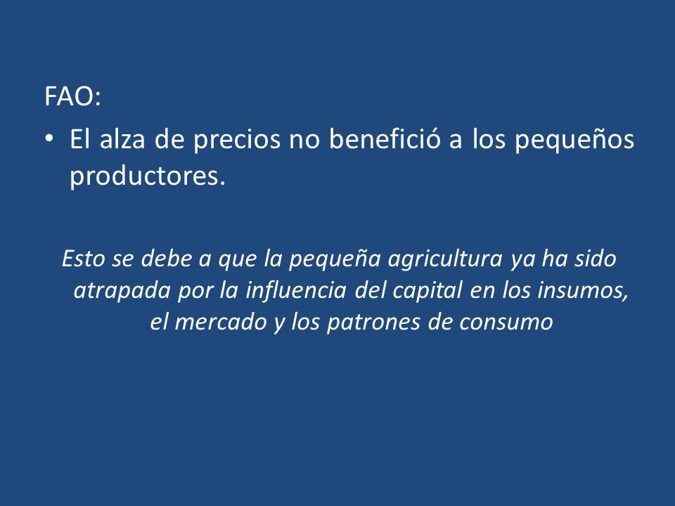 FAO: El alza de precios no benefició a los pequeños productores. Esto se debe a que la pequeña agricultura ya ha sido atrapada por la influencia del c