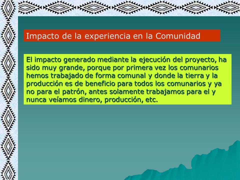 Impacto de la experiencia en la Comunidad El impacto generado mediante la ejecución del proyecto, ha sido muy grande, porque por primera vez los comun