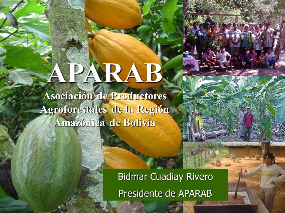 APARAB Asociación de Productores Agroforestales de la Región Amazónica de Bolivia Bidmar Cuadiay Rivero Presidente de APARAB