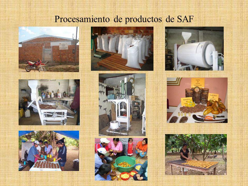 Procesamiento de productos de SAF