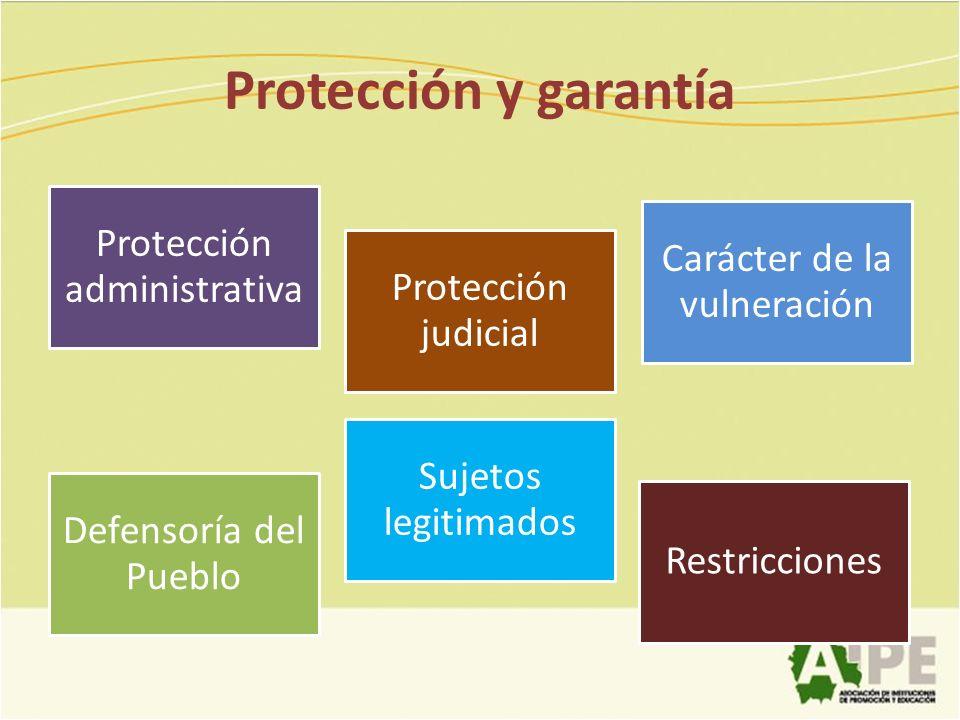 Protección y garantía Protección administrativa Protección judicial Carácter de la vulneración Defensoría del Pueblo Sujetos legitimados Restricciones