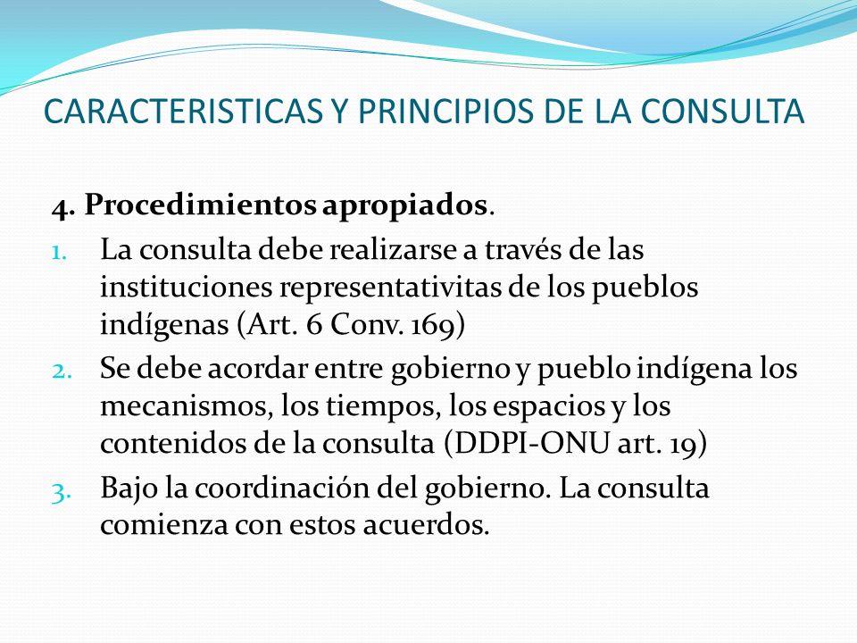 CARACTERISTICAS Y PRINCIPIOS DE LA CONSULTA 4. Procedimientos apropiados. 1. La consulta debe realizarse a través de las instituciones representativit