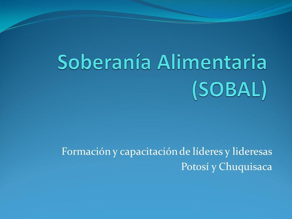 Formación y capacitación de líderes y lideresas Potosí y Chuquisaca