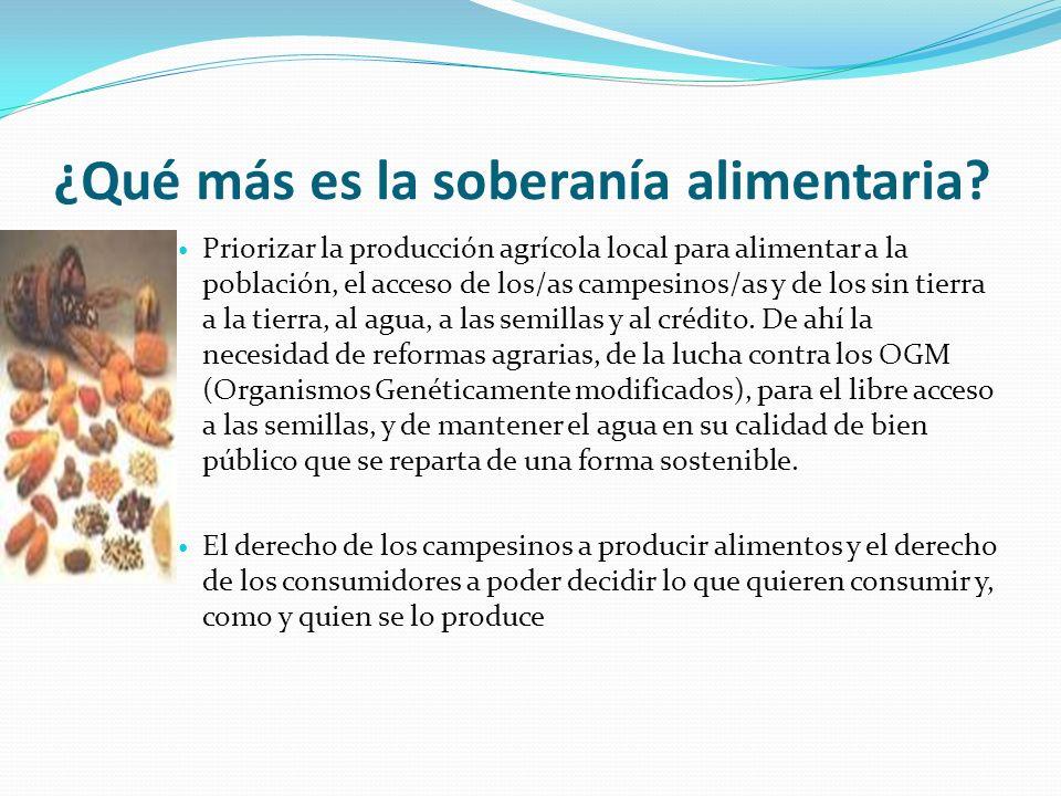 ¿Qué más es la soberanía alimentaria? Priorizar la producción agrícola local para alimentar a la población, el acceso de los/as campesinos/as y de los