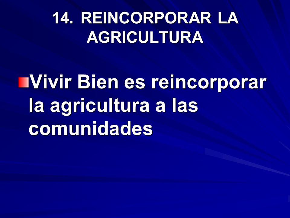 14.REINCORPORAR LA AGRICULTURA Vivir Bien es reincorporar la agricultura a las comunidades