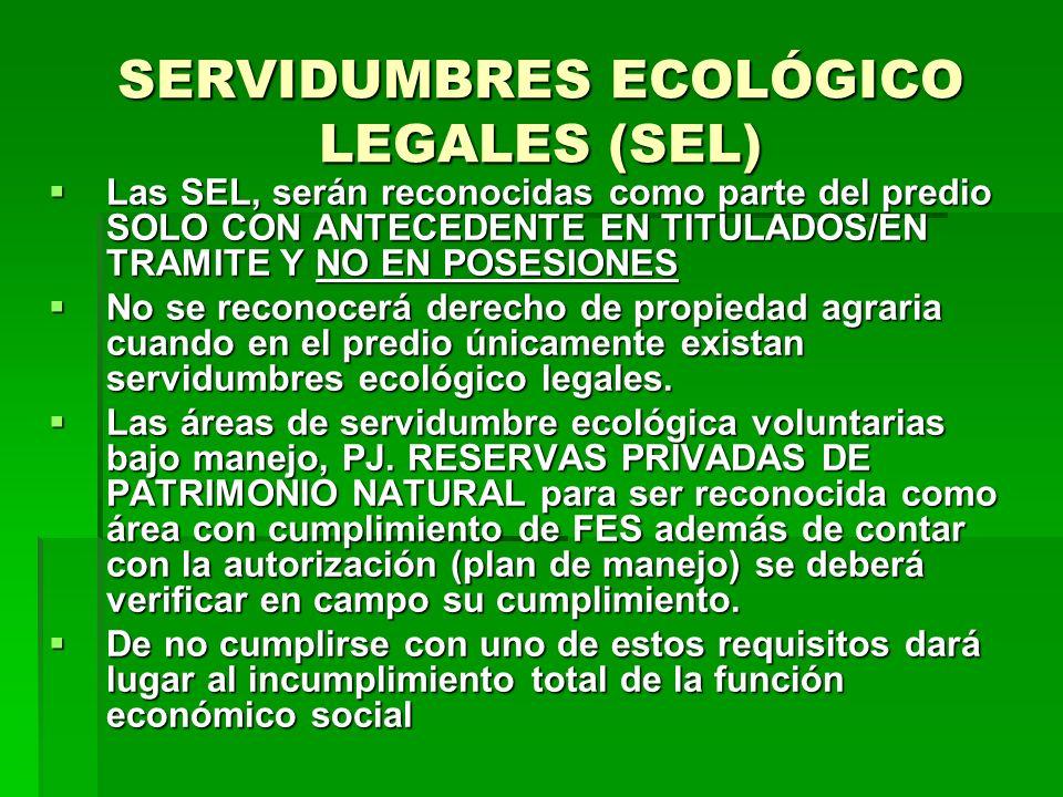 SERVIDUMBRES ECOLÓGICO LEGALES (SEL) Las SEL, serán reconocidas como parte del predio SOLO CON ANTECEDENTE EN TITULADOS/EN TRAMITE Y NO EN POSESIONES