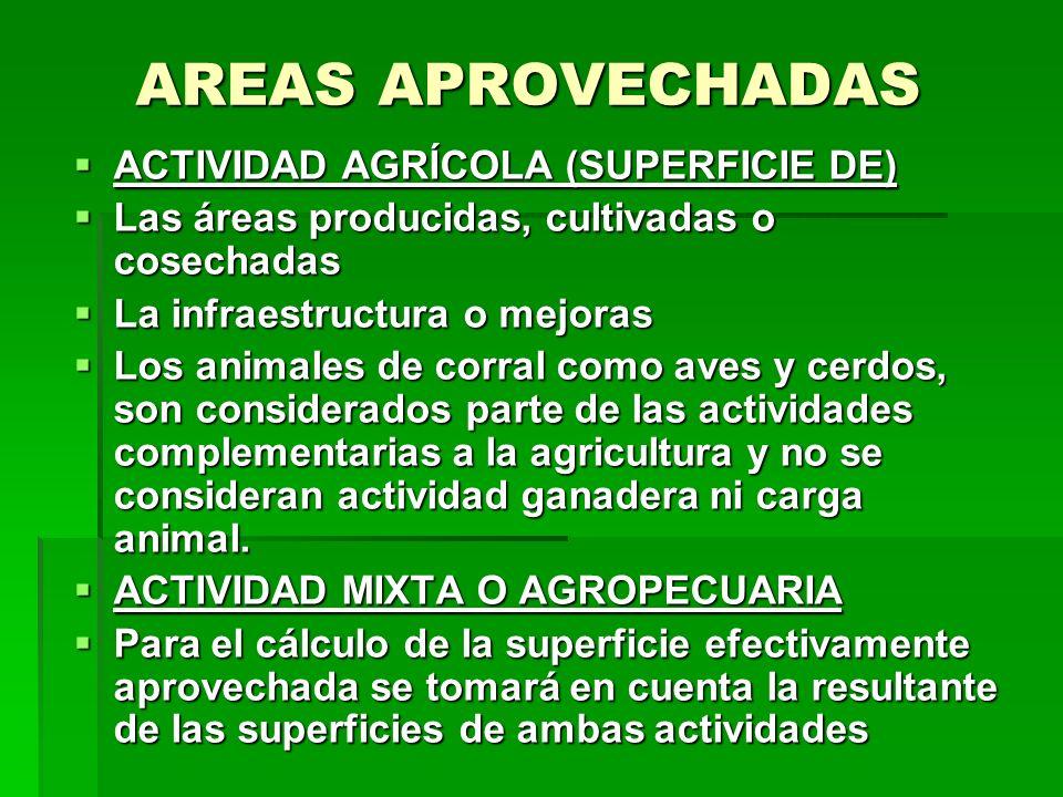 AREAS APROVECHADAS ACTIVIDAD AGRÍCOLA (SUPERFICIE DE) ACTIVIDAD AGRÍCOLA (SUPERFICIE DE) Las áreas producidas, cultivadas o cosechadas Las áreas produ