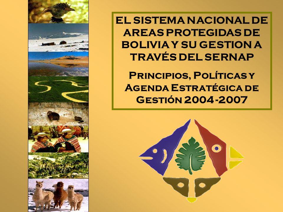 El Servicio Nacional de Areas Protegidas En Septiembre de 1997, la Ley de Organización del Poder Ejecutivo crea el Servicio Nacional de Areas Protegidas, destinado a: Coordinar el funcionamiento del Sistema Nacional de Areas Protegidas Garantizar la gestión integral de las Areas Protegidas de interés nacional