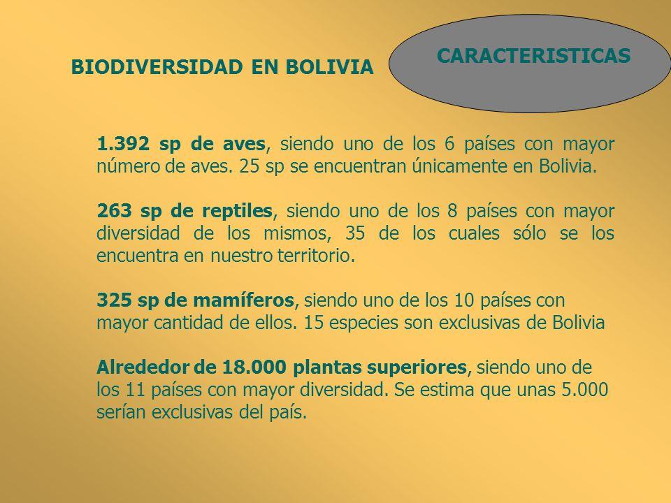CARACTERISTICAS BIODIVERSIDAD EN BOLIVIA 186 especies de anfibios, siendo uno de los 20 países con mayor número.