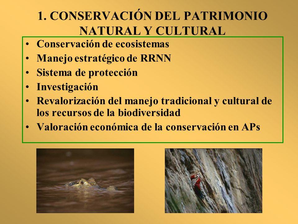 1. CONSERVACIÓN DEL PATRIMONIO NATURAL Y CULTURAL Conservación de ecosistemas Manejo estratégico de RRNN Sistema de protección Investigación Revaloriz