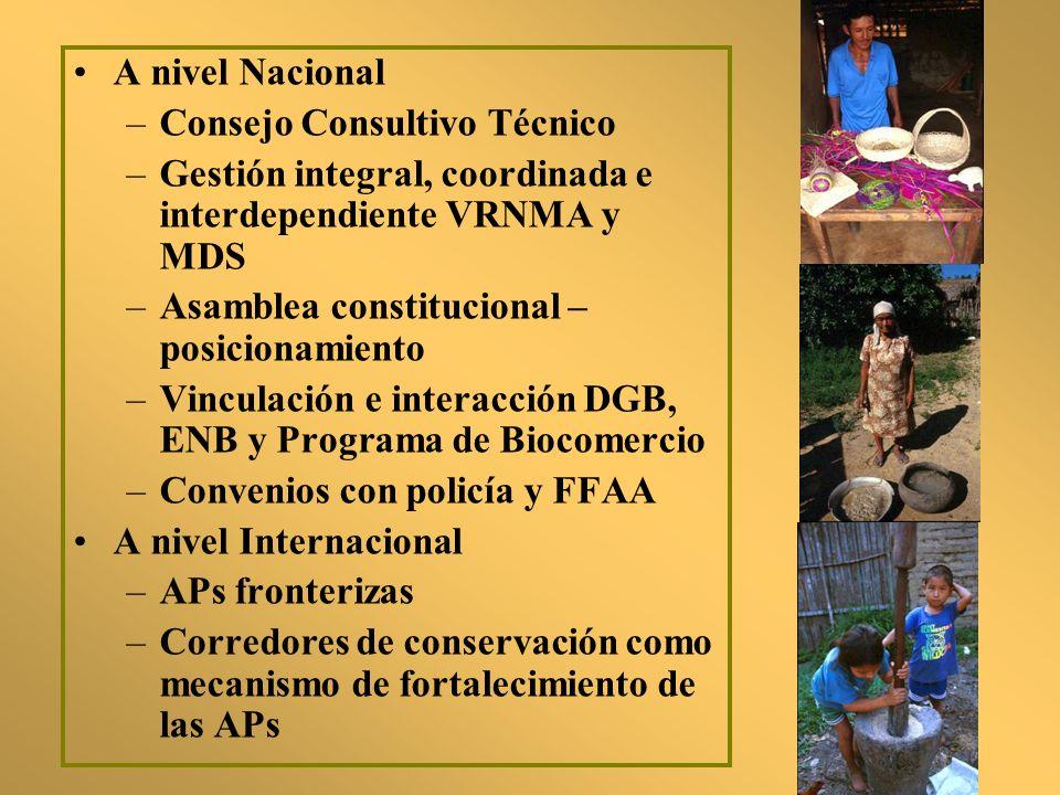 A nivel Nacional –Consejo Consultivo Técnico –Gestión integral, coordinada e interdependiente VRNMA y MDS –Asamblea constitucional – posicionamiento –
